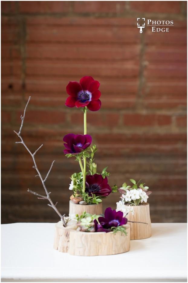 A floral still-life (c) Erin Hernandez-Reisner