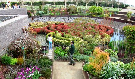 the azalea maze