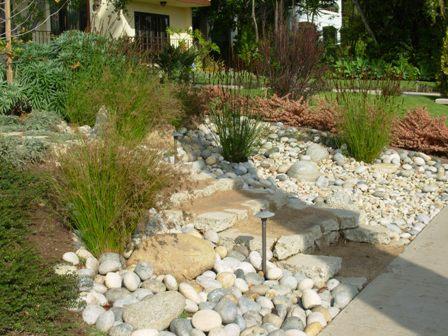 Santa Monica drycreek garden with infiltration