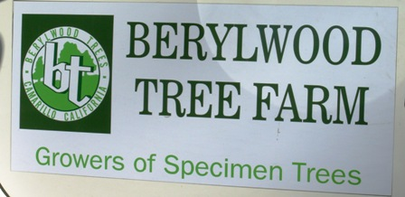 Debra Prinzing » Attachment » Berylwood Tree Farm