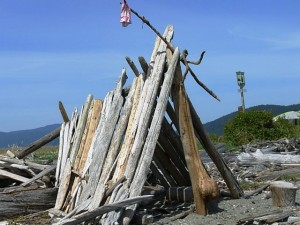Driftwood shelter on Spencer Spit