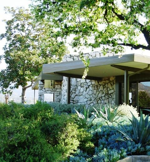 Debra Prinzing Post A Midcentury Home Needs A Modern Garden