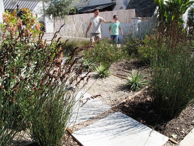 Debra Prinzing Post Mostly Native Plant List For A Modern