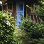 Garden shed with Blue Door