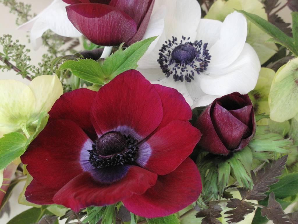 Debra Prinzing 187 Post 187 Floral Urns That Earn My Admiration