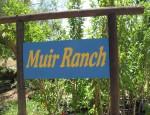 MuirRanch_7589
