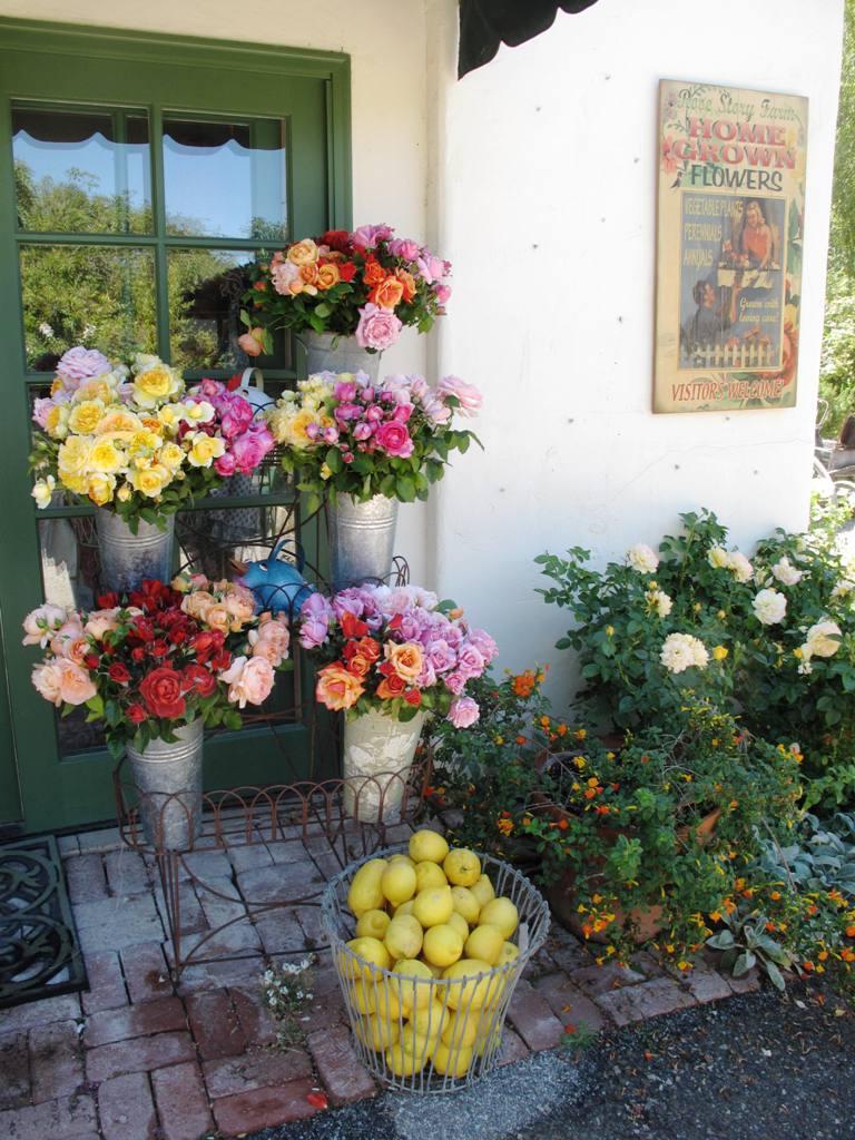 Rose Story Farm display