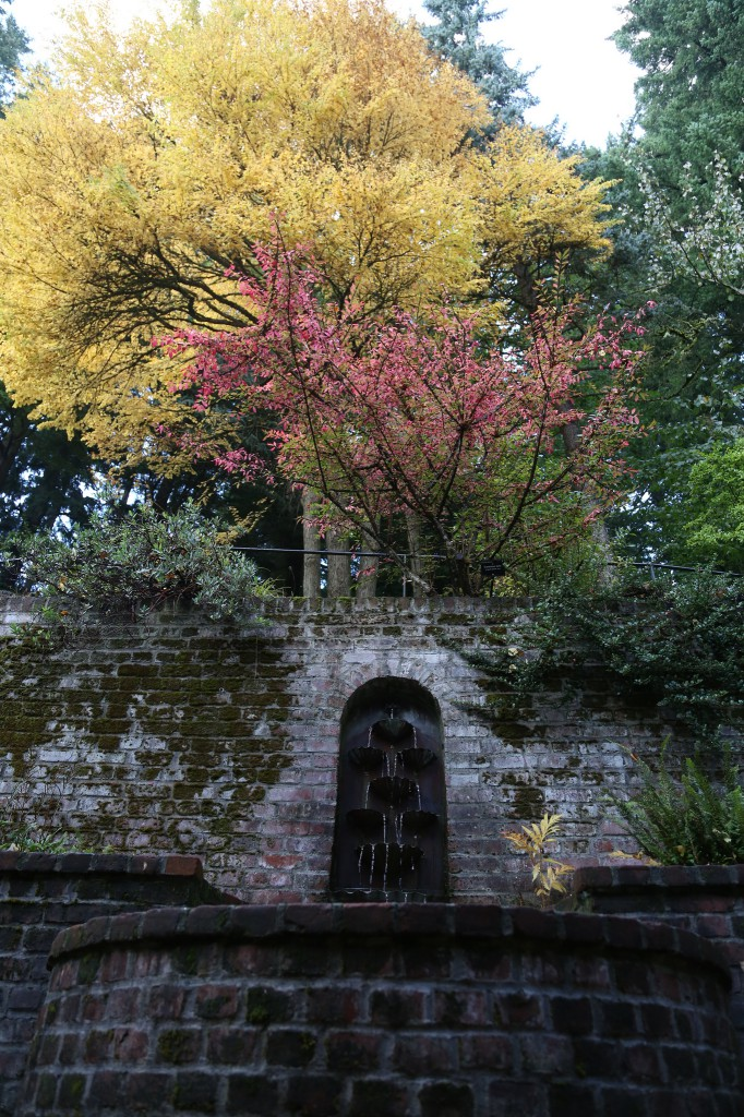 Leach Botanic Garden