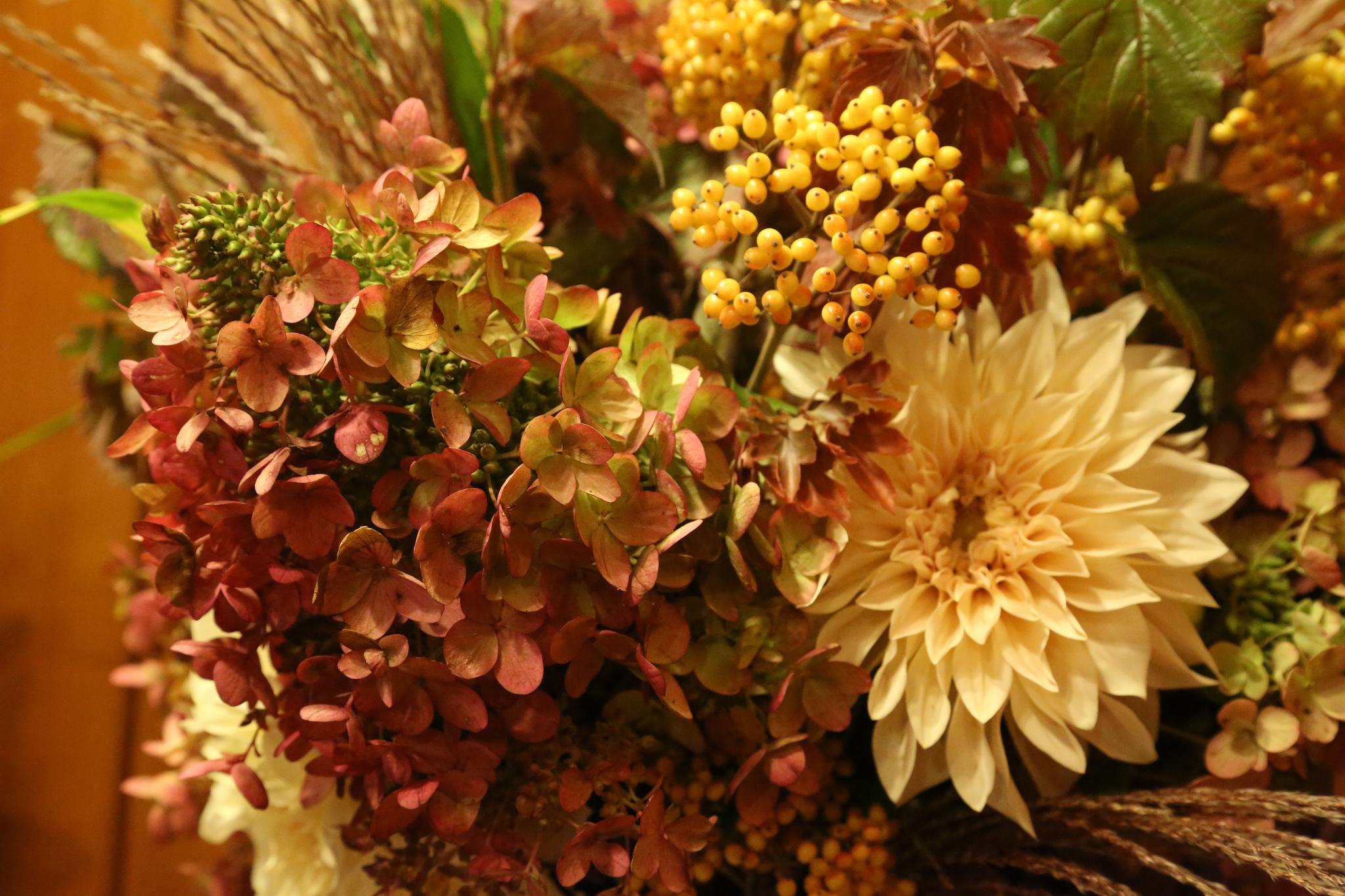 Oregon Roses Flowers Wholesale Growers