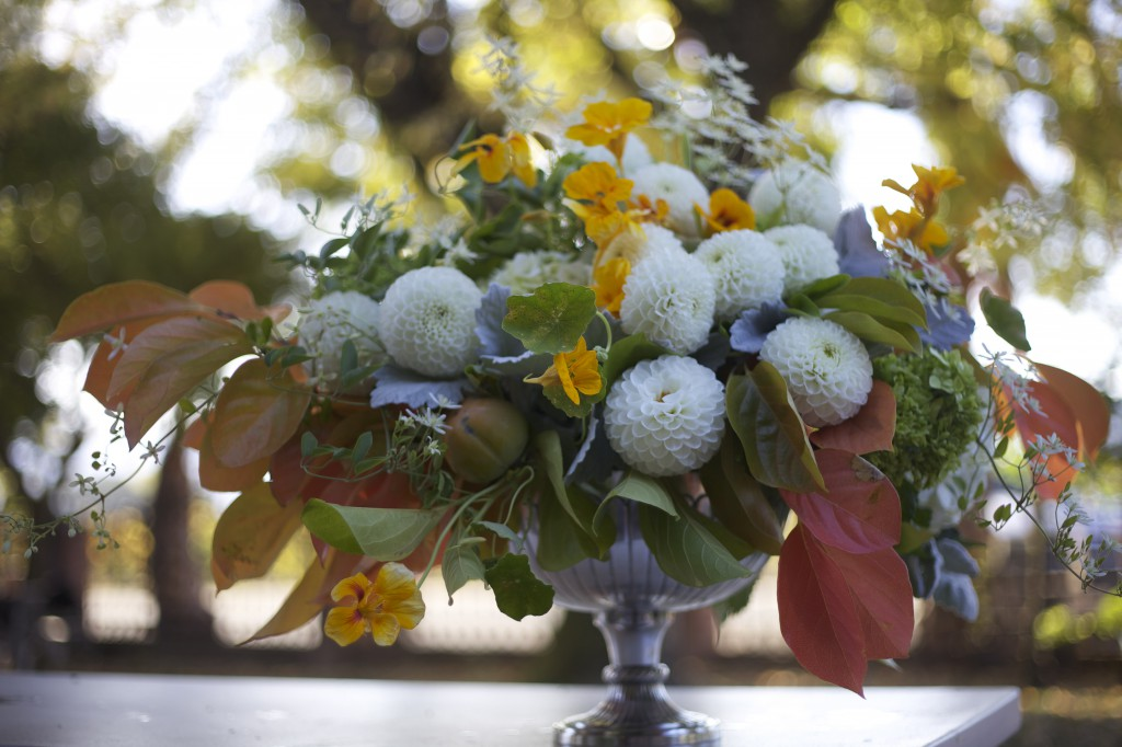 Bella Fiori Dahlias - mostly from Alicia's garden, Dahlias are CA grown (designed while in CA)