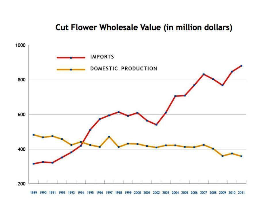 cutflower_graph