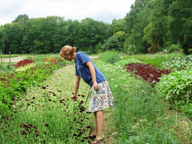 Gretel, touring me through the growing fields.