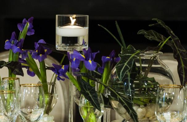 (c) Washington Post image of California irises and Florida tropical foliage.