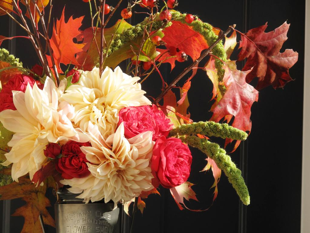 Peterkort's lovely red garden rose 'Piano Freidland', makes this autumn arrangement sparkle!