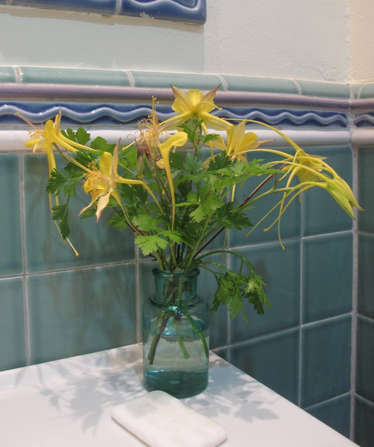 Cheery golden-yellow columbine in the bathroom.