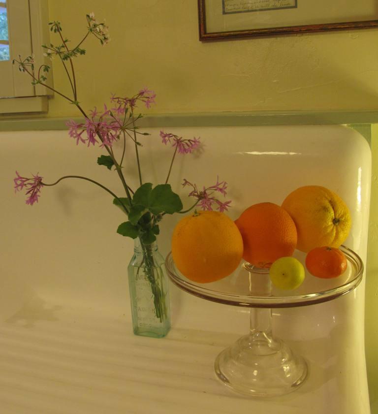 Geraniums (pelargoniums) in a bottle; citrus on a cake plate.