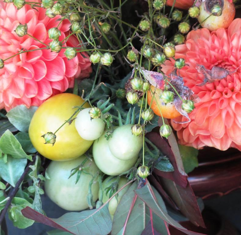 Tomato-Dahlia detail