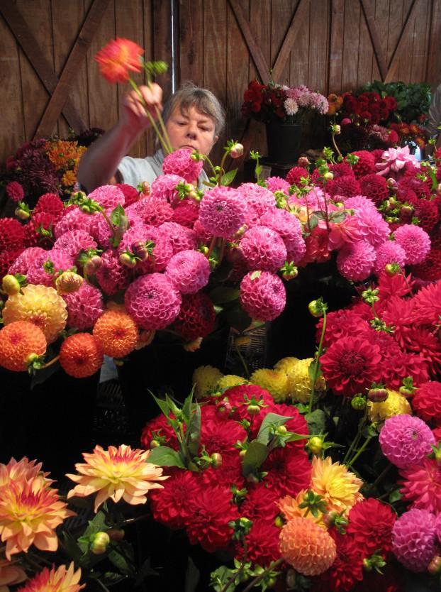 JoAnn Mahaffey designs flowers in Dan's Dahlias stall at the Olympia Farmers' Market.