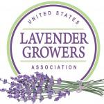 Lavender-web-small-150x150