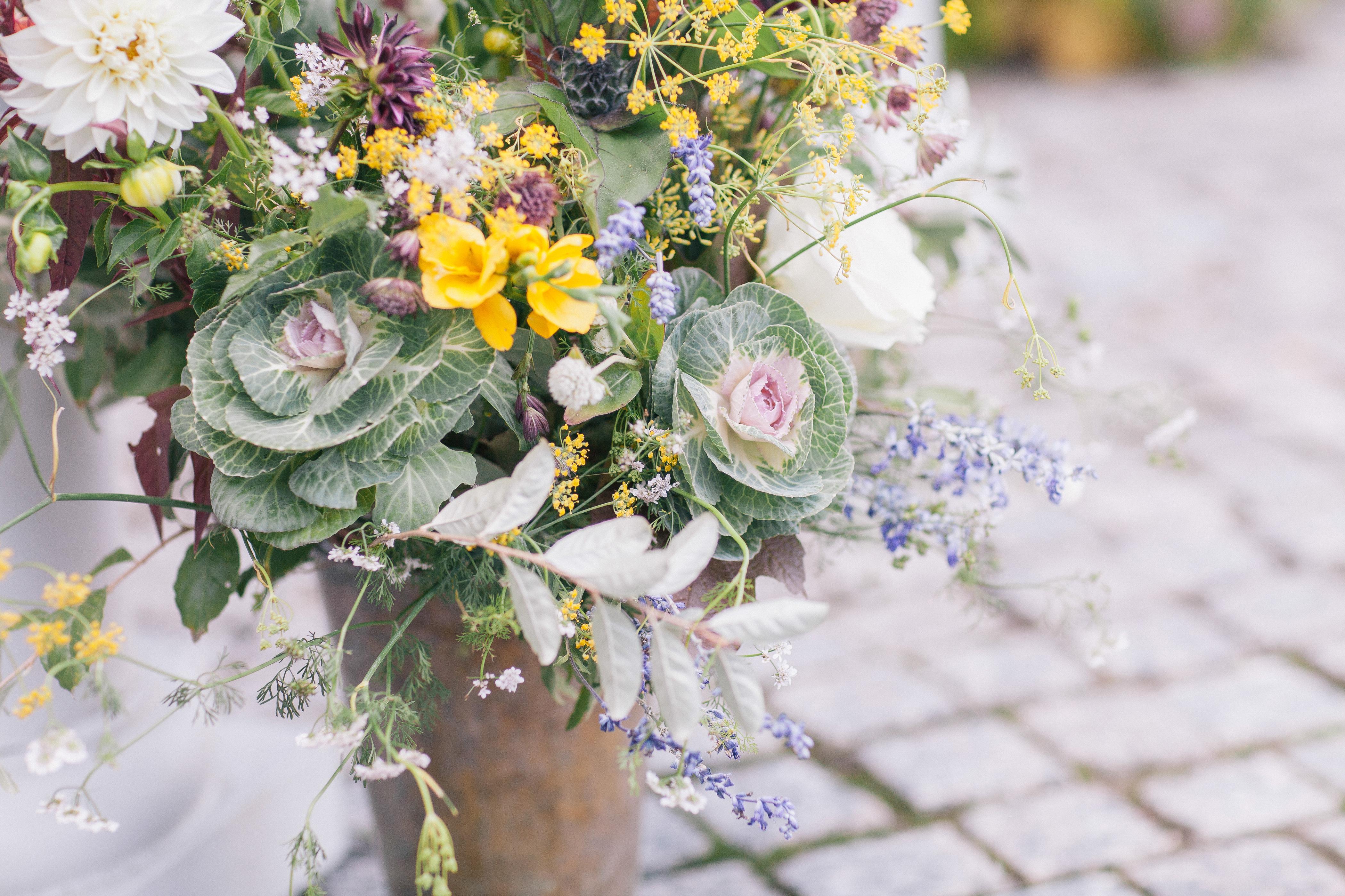Debra Prinzing » Post » Brooklyn Grows Flowers! Meet Molly Oliver ...