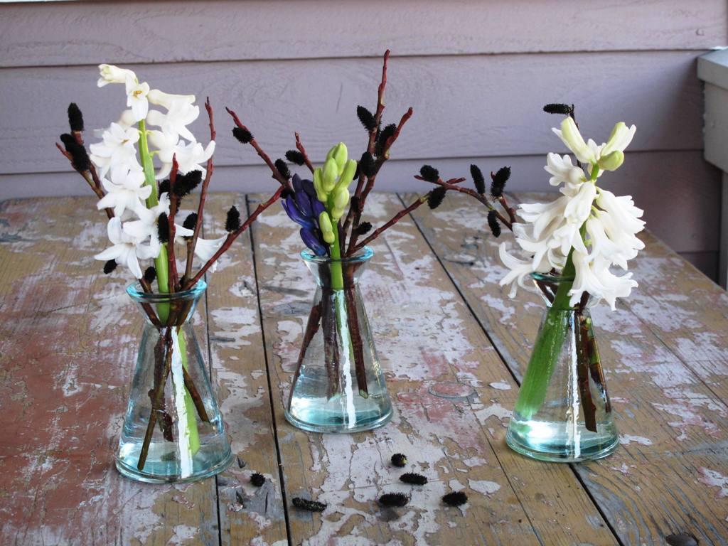 Debra prinzing post week 9 heady hyacinth for the slow week 9 heady hyacinth for the slow flowers challenge reviewsmspy