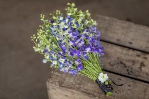 Simply Larkspur bouquet - (c) Photo by Julian Winslow for British Flowers Week