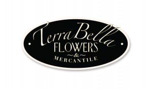 Terra_Bella_Logo_plain_hires
