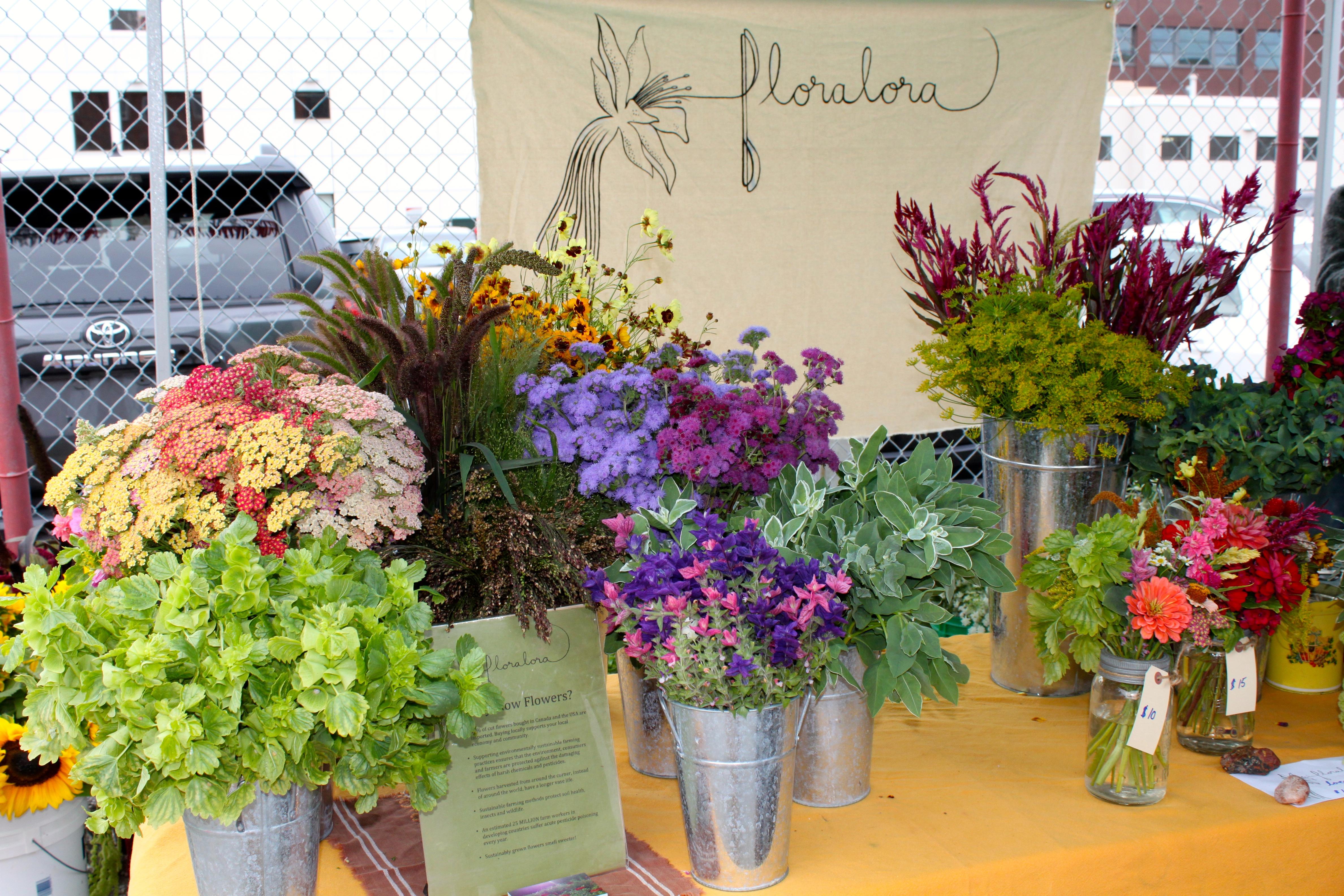 Debra prinzing post episode 366 the debut of canadian flowers flowers from floralora a slow flowers member based in ontario on display at toronto flower market izmirmasajfo