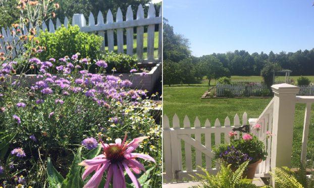 Scenes from Meadowview Flowers in Princeton, Kentucky