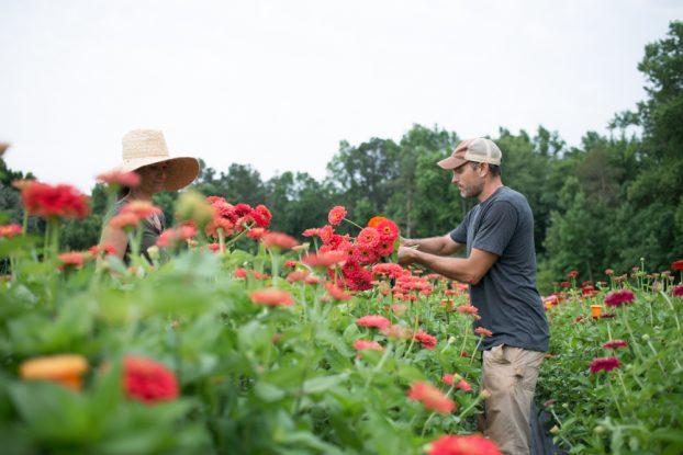 Georgia flower farmers Mandy and Steve O'Shea (c) Brittany Towsell