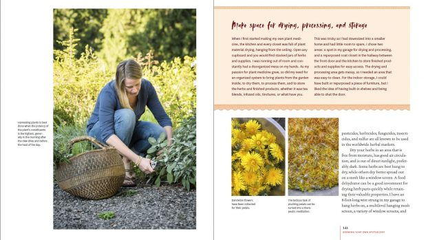 Debra Prinzing » Landscape Design