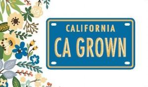 CA Grown Logo Card