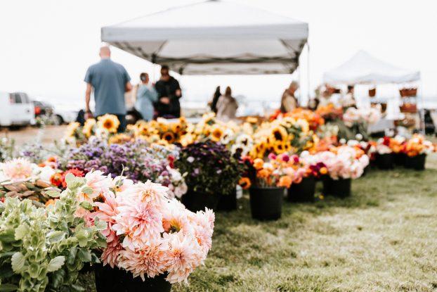 Debra Prinzing Floral Design
