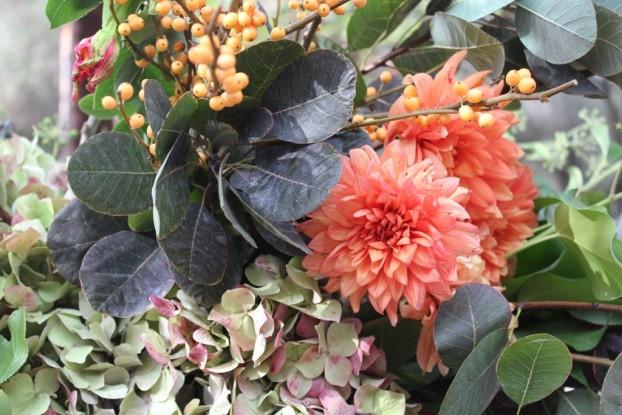Detail of autumn colors and textures, including the Cotinus, the peachy-orange dahlias, antique hydrangeas and the yellow-orange Ilex.
