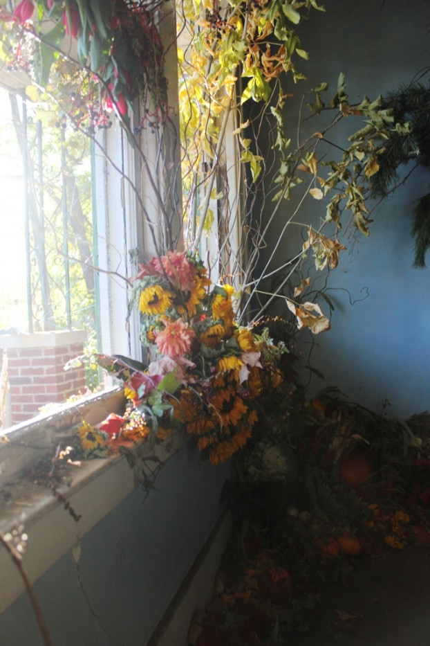 Summer in Michigan, expressed in local flora