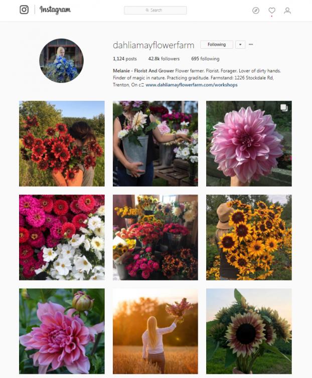 linda crews instagram