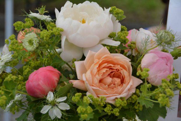 A beautiful peony mix from Butternut Gardens