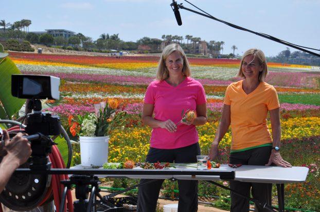 The Flower Duet design team on camera at The Flower Fields.