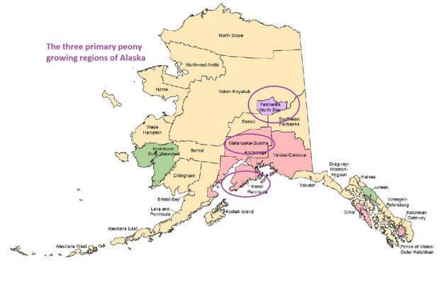 Interior (Fairbanks), Central (Mat-Su Valley) and Homer (Kenai Peninsula)
