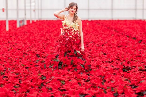 Fantasy + Fashion + Flowers